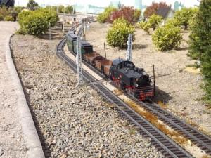 Maasdorf 2015, Güterzug mit Personenbeförderung auf freier Strecke, Quelle: Holger Gatz