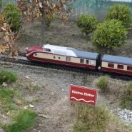 Wenn in Maasdorf Fahrtag ist, kommt sogar ein TEE bis zur Elster, Quelle: Holger Gatz